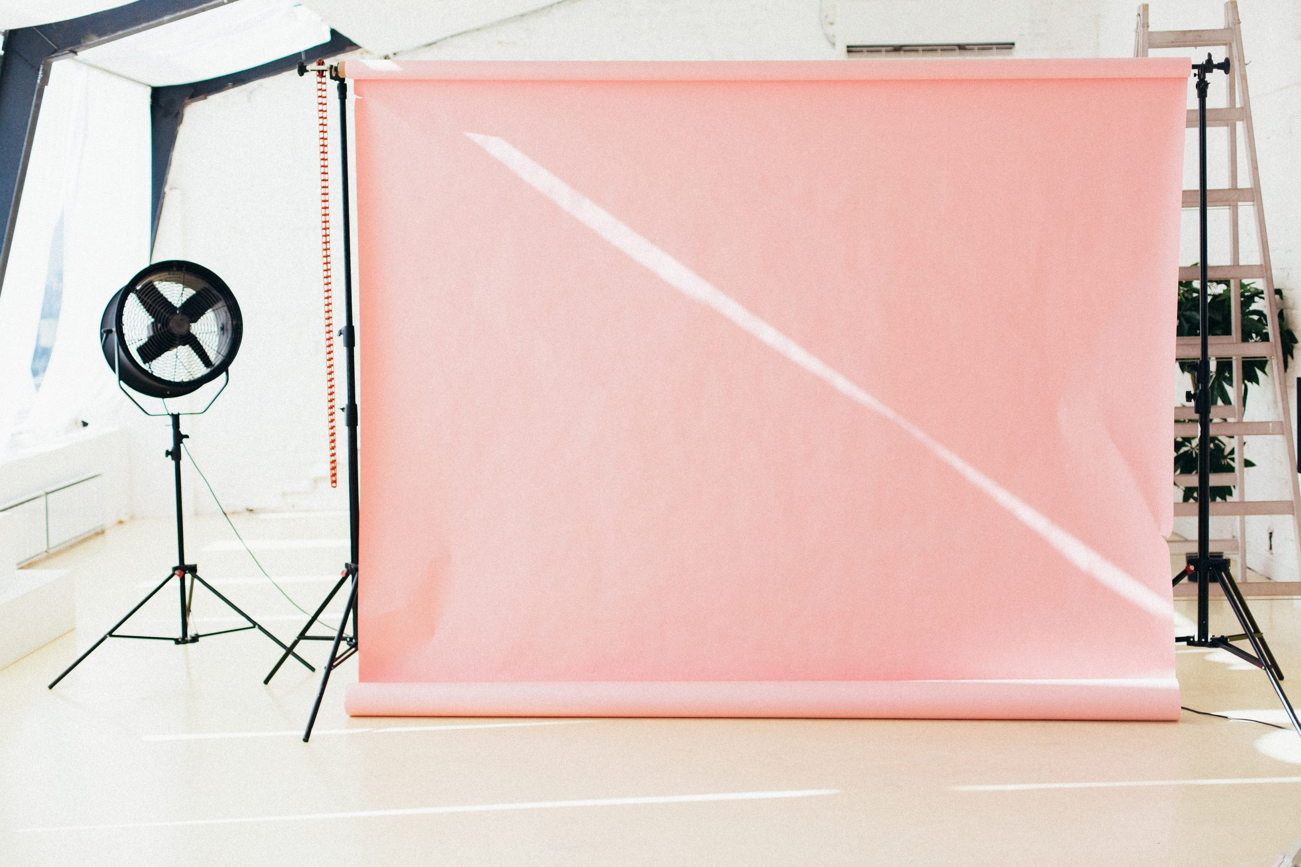 Reasons Why Photography Backdrops Are So Essential